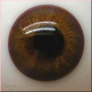 Baby Brown Half Round Designer Crystal Glass Eyes 18Mm