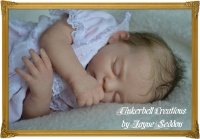 DVD LEARN TO REBORN BABY DOLLS FROM START TO FINISH With Jayne Seddon