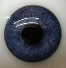 Dark Baby Blue Blown Glass Eyes 22Mm