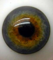 Blue Topaz Blown Glass Half round Eyes 24mm