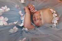 SHYLYN Fairy Baby Doll Kit